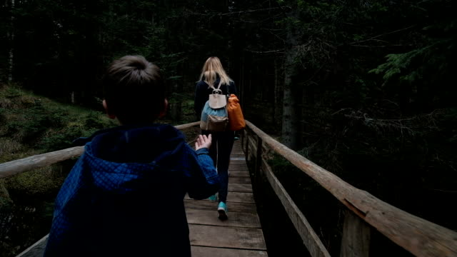 People with children slowly pass through the old wooden bridge video