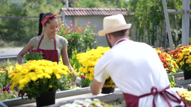 People working at the garden center