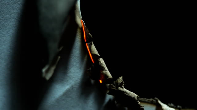 vídeos de stock e filmes b-roll de peper burning close-up background - cinza