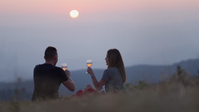 Perfect date Couple drinking wine in nature in sunset picnic stock videos & royalty-free footage
