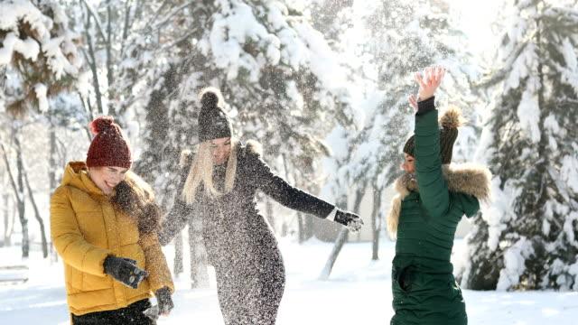 kar üzerinde mükemmel bir gün - aktivite stok videoları ve detay görüntü çekimi