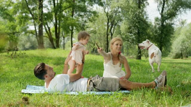 スローモーション: 完璧な家族公園で毛布の上に座ってと犬と遊ぶ - スロベニア点の映像素材/bロール