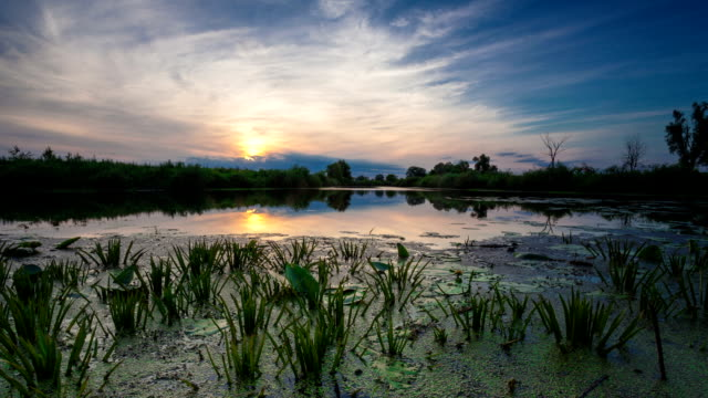 Perfect Landscape Dawn Time Lapse Perfect Landscape Dawn Time Lapse high dynamic range imaging stock videos & royalty-free footage
