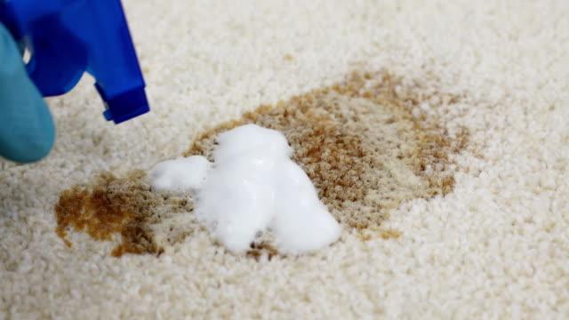 persona pulizia macchie sul tappeto - moquette video stock e b–roll