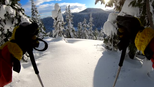 pov of person descending through deep snow, in forest - sci video stock e b–roll