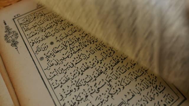 stockvideo's en b-roll-footage met een persoon is bladeren door een quran - koran