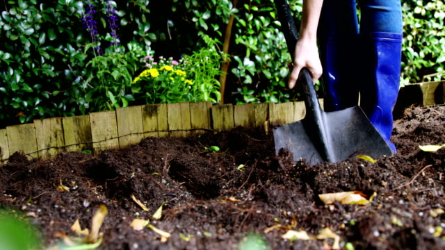 Person mixing soil with shovel in garden video