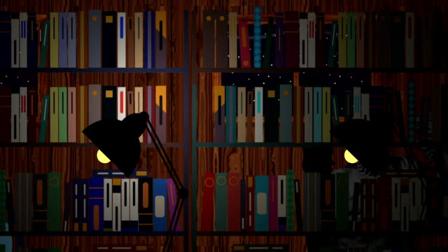 Person Walks in Library at Night in Cartoon Vector Style video