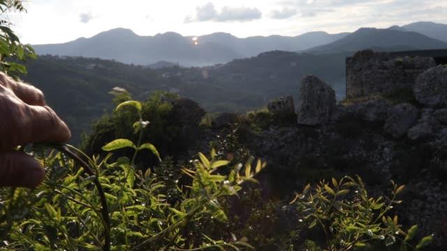 vidéos et rushes de main de la personne recule des branches pour faire apparaître les montagnes et la vallée au lever du soleil - un seul homme d'âge mûr
