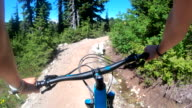 istock POV perspective view of biking along mountain slope, on trail 1266341772