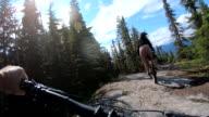 istock POV perspective view of e-biking along mountain trail 1255193246