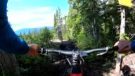 istock POV perspective view of e-biking along mountain trail 1255221194