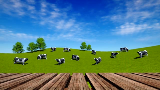vídeos de stock, filmes e b-roll de a tabela e as vacas de madeira da perspectiva pastam no prado verde - animais da fazenda
