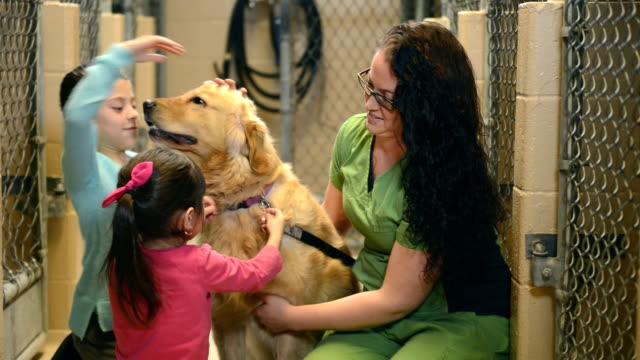 Pet adoption video