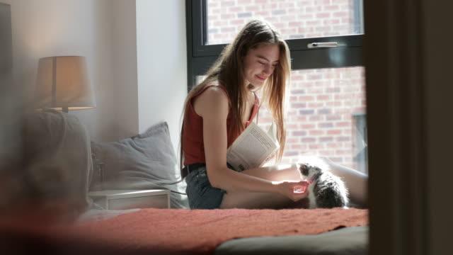 husdjursägare multi-tasking - working from home bildbanksvideor och videomaterial från bakom kulisserna