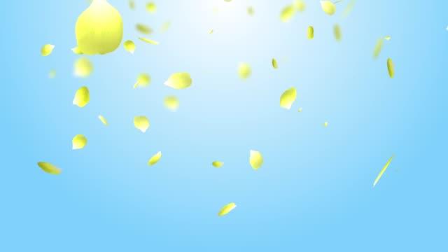 vídeos y material grabado en eventos de stock de pétalo rosa amarillo fondo cielo - pétalo