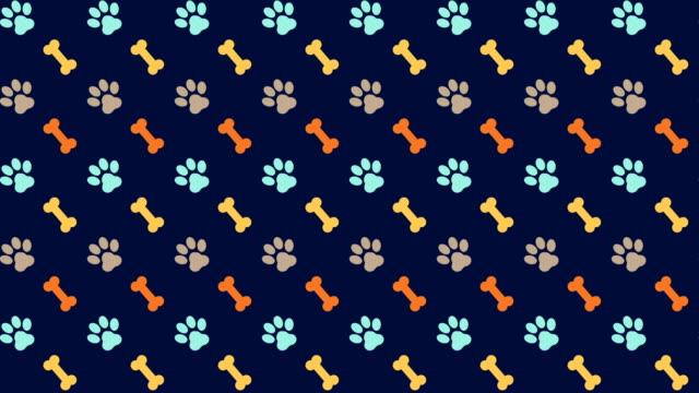 pets pattern scrolling background with colored paws and dog bones - łapa filmów i materiałów b-roll