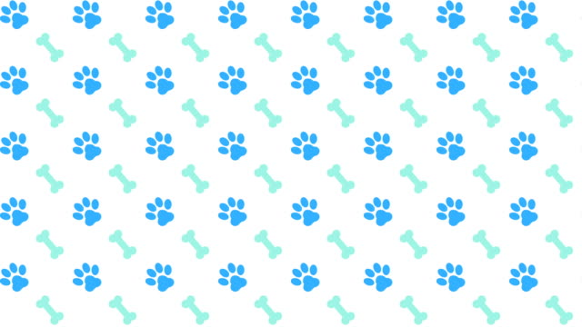 pets pattern scrolling background with colored paws and dog bones - лапа стоковые видео и кадры b-roll
