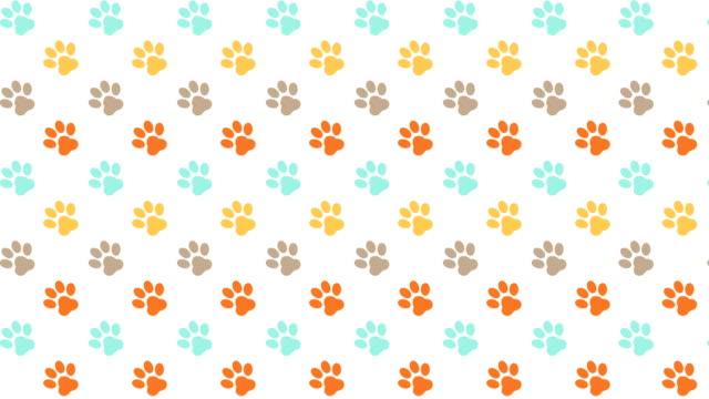 Pets Pattern Scrolling Background With Colored Paws Animated scrolling pet background with colored paws paw stock videos & royalty-free footage
