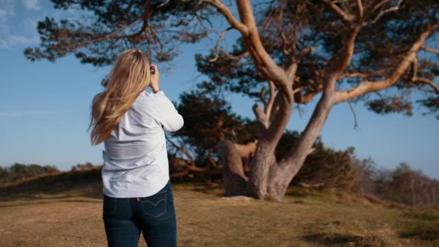 Photographer Focusing Camera On Tree