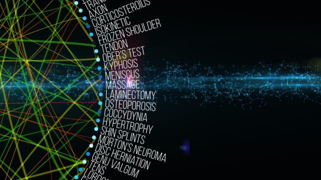 理学療法用語 - カイロプラクター点の映像素材/bロール