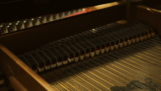Piano mechanics inside hammers strings video
