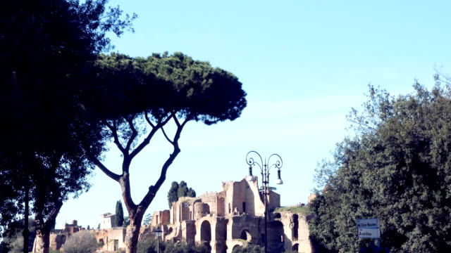 Piazza Venezia, view of Cesare's forum, Rome video