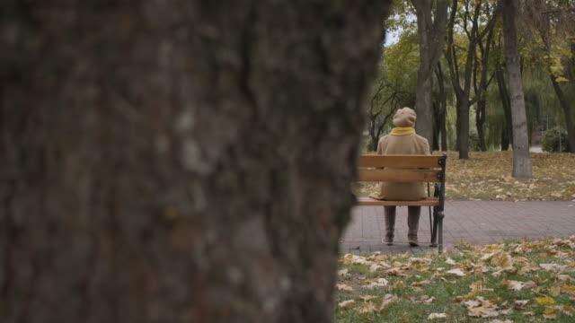 taschendieb pov spionage auf einsame alte frau im park, ältere betrug und missbrauch opfer - abwesenheit stock-videos und b-roll-filmmaterial