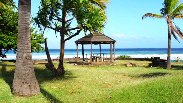 Picnic area in Reunion Island a sunny day video