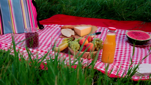 picnic blanket with food - picnic video stock e b–roll