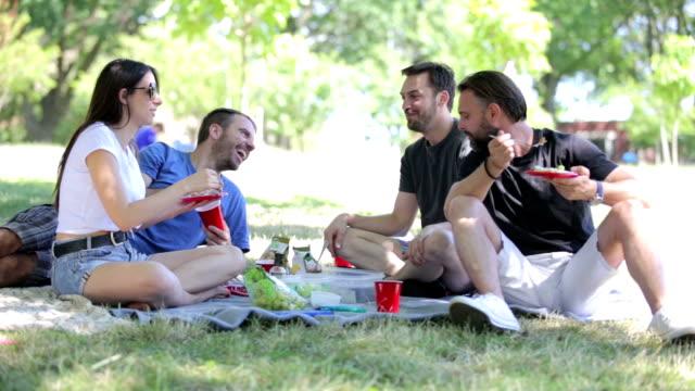 公園でのピクニック ビデオ