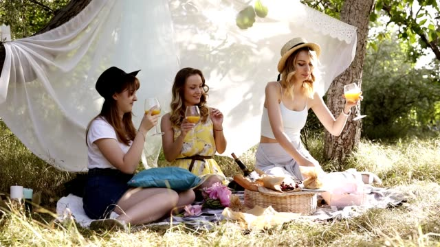 picnic or hen party concept outdoors. three attractive young women sitting, laughing. cheers with cocktails. sunny day, green nature - picnic stock videos and b-roll footage