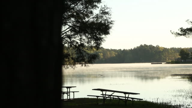 Picnic Tables Overlooking Beautiful Lake With Steam Rising At Sunrise