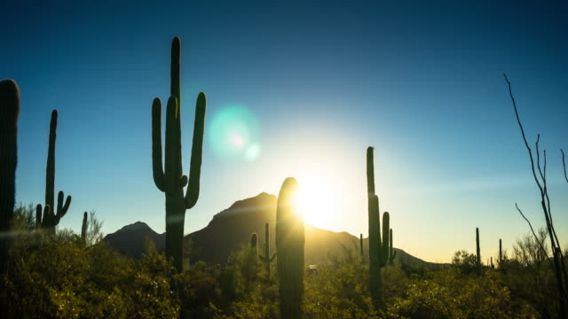 Picturesque Desert Scene at Sunrise - Time Lapse video