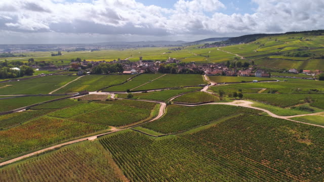 Picturesque French village and vineyards Picturesque French village and vineyards cultivated land stock videos & royalty-free footage