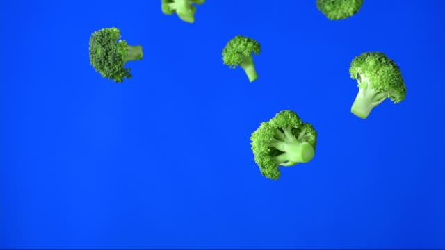 pezzi di broccoli cadere (super rallentatore) - broccolo video stock e b–roll