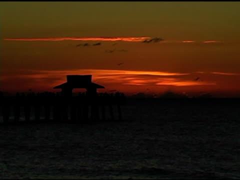 Pier at Twilight NTSC video