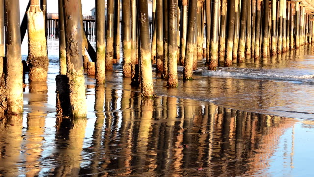 Pier pilings at sunset video