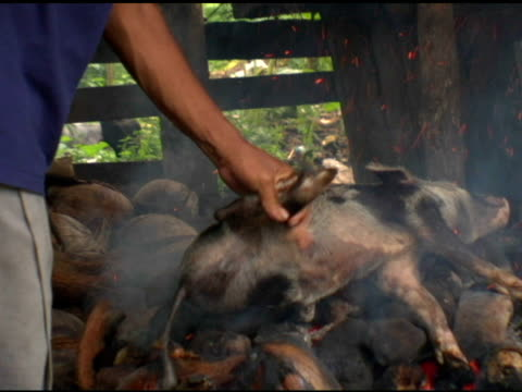 Pig Roast video