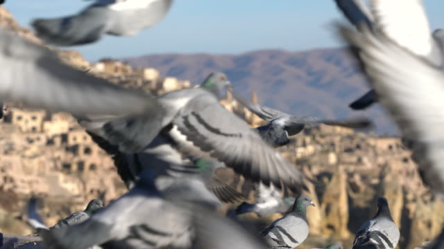Pigeon Valley and the town of Uchisar, Cappadocia. video
