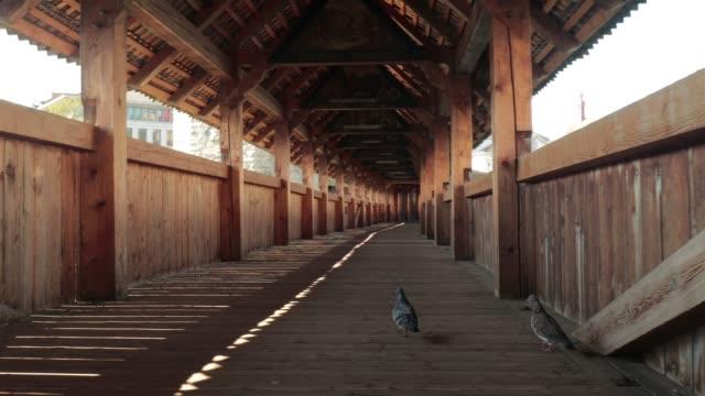 Pigeons in empty Kapelbrücke, Luzern - 4K