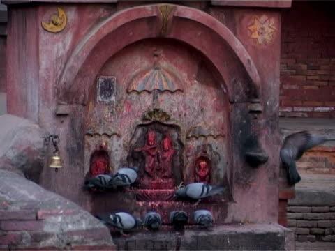 Pigeons settle on a Hindu shrine video