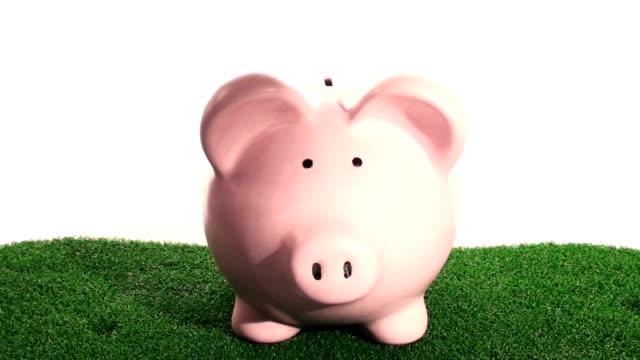 Piggy bank on grass - HD