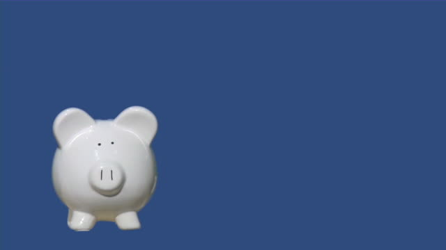 Piggy bank. Savings, finance, banking, economy concept. Chroma key. Piggy bank. Savings, finance, banking, economy concept. Chroma key, blue screen, green screen. piggy bank stock videos & royalty-free footage