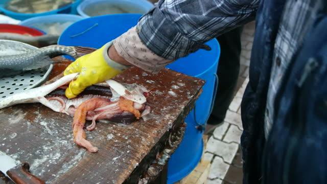 szczupak ryba czyszczenia - spoiler filmów i materiałów b-roll