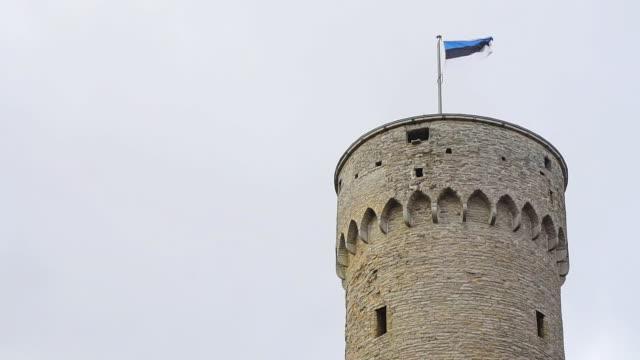stockvideo's en b-roll-footage met pikk hermann toren in tallinn, estland. - estland