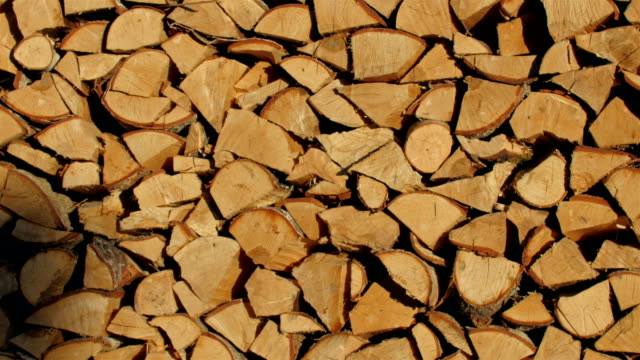 Pile of birch woods ready to transport. – film