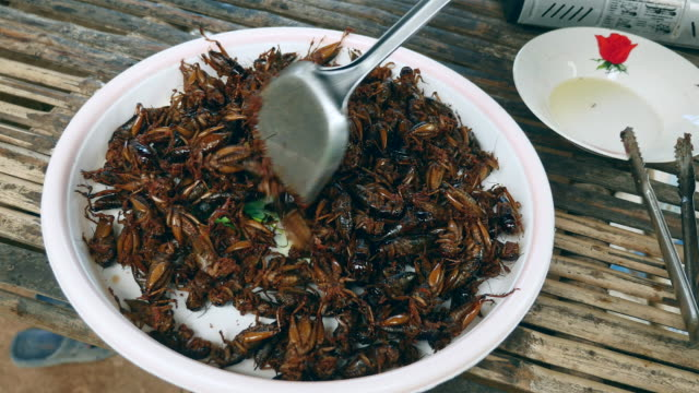 Pile of deep fried grasshoppers on a bowl video