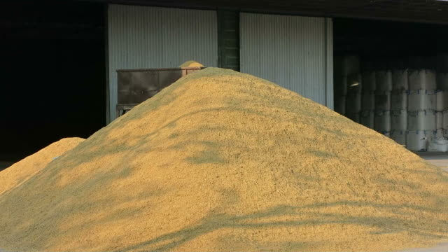 Pile of rice video