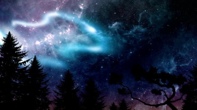 Pine forrest with aurora borealis video